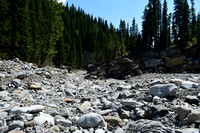 Canyon Creek in the summer
