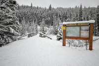 Lake-Louise-Cross-Country-Trail-Bow-9